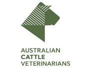 Australian Cattle Veterinararians