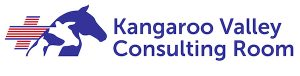 Kangaroo Valley Consulting Room